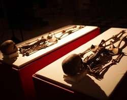 Os restos ósseos (foto National Geographic)